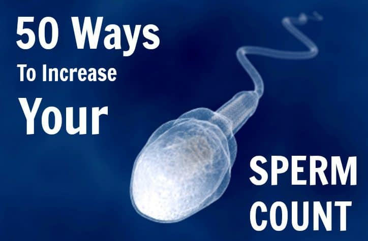 how to increase your sperm count