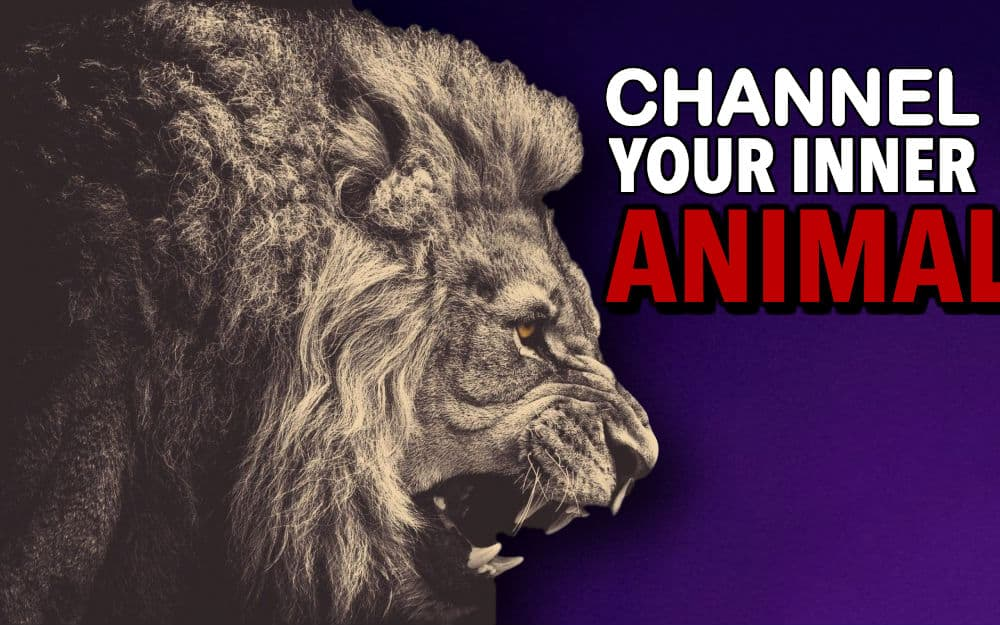channel your inner animal